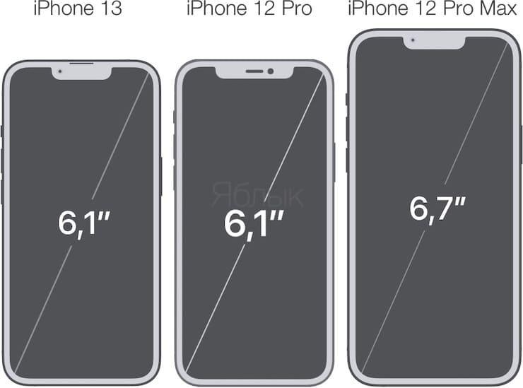 Сравнение размеров дисплеев iPhone 13, iPhone 12 Pro и iPhone 12 Pro Max